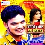 Tor Didi Ke Bhatar Pura Ahira Ha Mp3 Song