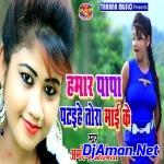 Hamar Papa Pataihe Tora Mai Ke (Bhojpuri Mix 2019) Dj Nitish Babu Gopalganj
